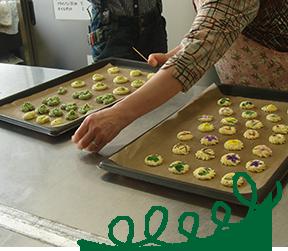 摘み菜クッキーづくり体験